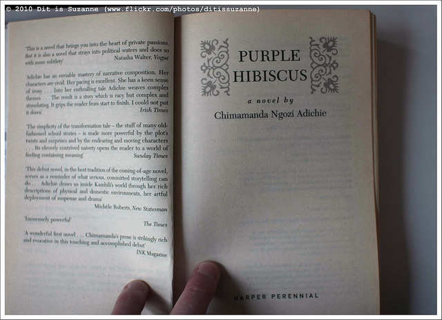 Plot And Characters Of Purple Hibiscus By Chimamanda Adichie For
