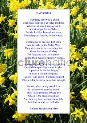 the daffodils by william wordsworth notes