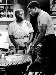 A RAISIN IN THE SUN…SUMMARY-PLOT OVERVIEW-SYNOPSIS (3-5)