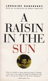 "FOR SALE: 100 ESSAY QUESTIONS ON ""A RAISIN IN THE SUN"" FOR SCHOOL HOMEWORK AND EXAMS"