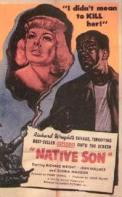 """FOR SALE: 100 ESSAY QUESTIONS ON """"NATIVE SON"""" FOR SCHOOL HOMEWORK AND EXAMS"""